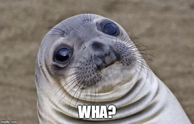 Awkward Moment Sealion Meme | WHA? | image tagged in memes,awkward moment sealion | made w/ Imgflip meme maker