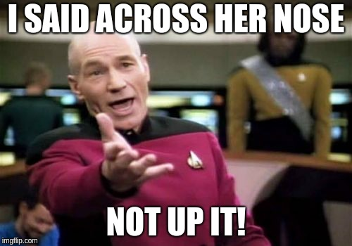 Picard Wtf Meme | I SAID ACROSS HER NOSE NOT UP IT! | image tagged in memes,picard wtf | made w/ Imgflip meme maker
