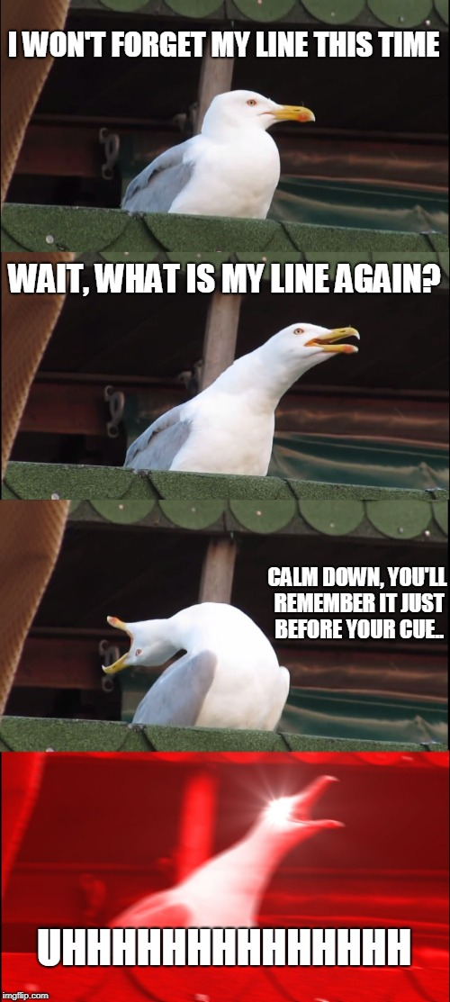 Inhaling Seagull Meme | I WON'T FORGET MY LINE THIS TIME WAIT, WHAT IS MY LINE AGAIN? CALM DOWN, YOU'LL REMEMBER IT JUST BEFORE YOUR CUE.. UHHHHHHHHHHHHHH | image tagged in memes,inhaling seagull | made w/ Imgflip meme maker