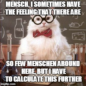 MENSCH, I SOMETIMES HAVE THE FEELING THAT THERE ARE SO FEW MENSCHEN AROUND HERE, BUT I HAVE TO CALCULATE THIS FURTHER | made w/ Imgflip meme maker