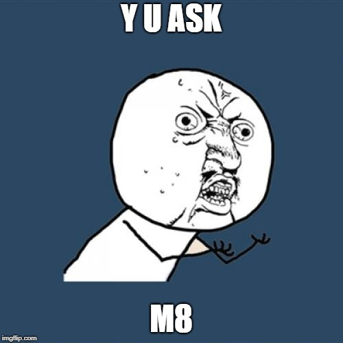 Y U ASK M8 | image tagged in memes,y u no | made w/ Imgflip meme maker
