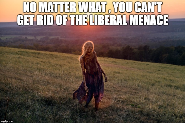 NO MATTER WHAT , YOU CAN'T GET RID OF THE LIBERAL MENACE | image tagged in stupid liberals | made w/ Imgflip meme maker