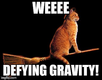 WEEEE DEFYING GRAVITY! | made w/ Imgflip meme maker