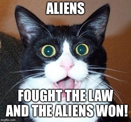 whoa cat | ALIENS FOUGHT THE LAW AND THE ALIENS WON! | image tagged in whoa cat | made w/ Imgflip meme maker