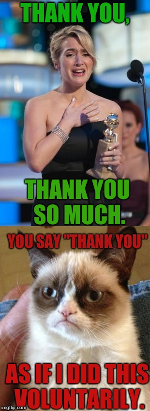 "Grumpy Cat Always Has To Go And Ruin Everything  | THANK YOU, THANK YOU SO MUCH. YOU SAY ""THANK YOU"" AS IF I DID THIS VOLUNTARILY. 