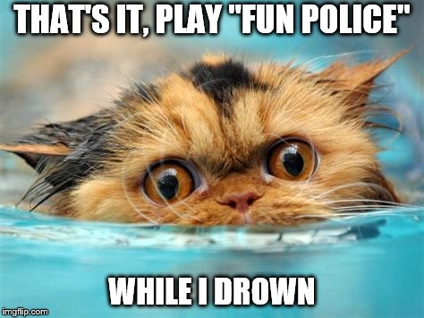 "THAT'S IT, PLAY ""FUN POLICE"" WHILE I DROWN 