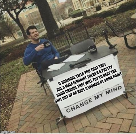 IF SOMEONE TELLS YOU THAT THEY ARE A MALE FEMINIST THERE'S A PRETTY GOOD CHANCE THEY WILL TRY TO BEAT THE SHIT OUT OF OR **PE A WOMAN AT SOM | image tagged in change my mind | made w/ Imgflip meme maker