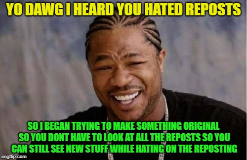 Yo Dawg Heard You Meme | YO DAWG I HEARD YOU HATED REPOSTS SO I BEGAN TRYING TO MAKE SOMETHING ORIGINAL SO YOU DONT HAVE TO LOOK AT ALL THE REPOSTS SO YOU CAN STILL  | image tagged in memes,yo dawg heard you | made w/ Imgflip meme maker