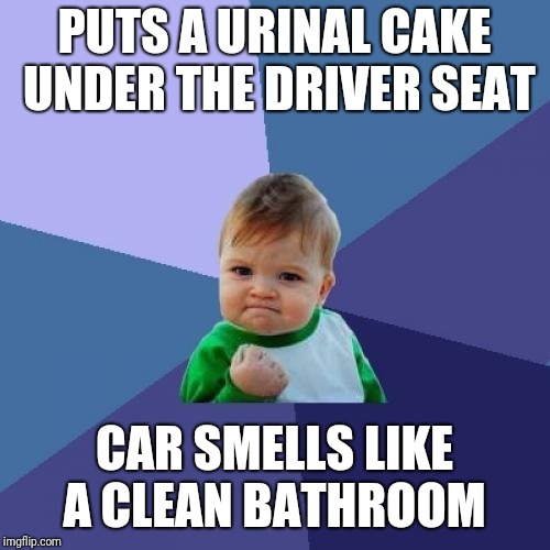 Cheap air freshener  | PUTS A URINAL CAKE UNDER THE DRIVER SEAT CAR SMELLS LIKE A CLEAN BATHROOM | image tagged in memes,success kid,funny memes | made w/ Imgflip meme maker
