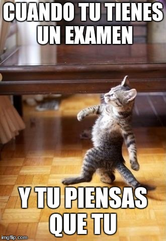 Cool Cat Stroll Meme | CUANDO TU TIENES UN EXAMEN Y TU PIENSAS QUE TU | image tagged in memes,cool cat stroll | made w/ Imgflip meme maker