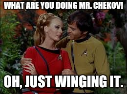 WHAT ARE YOU DOING MR. CHEKOV! OH, JUST WINGING IT. | made w/ Imgflip meme maker
