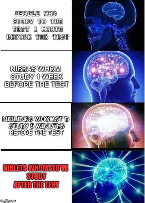 Expanding Brain Meme | PEOPLE WHO STUDY TO THE TEST 1 MONTH BEFORE THE TEST NIBBAS WHOM STUDY 1 WEEK BEFORE THE TEST NIBLINGS WHOMST'D STUDY 5 MINUTES BEFORE THE T | image tagged in memes,expanding brain | made w/ Imgflip meme maker