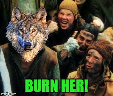 BURN HER! | made w/ Imgflip meme maker