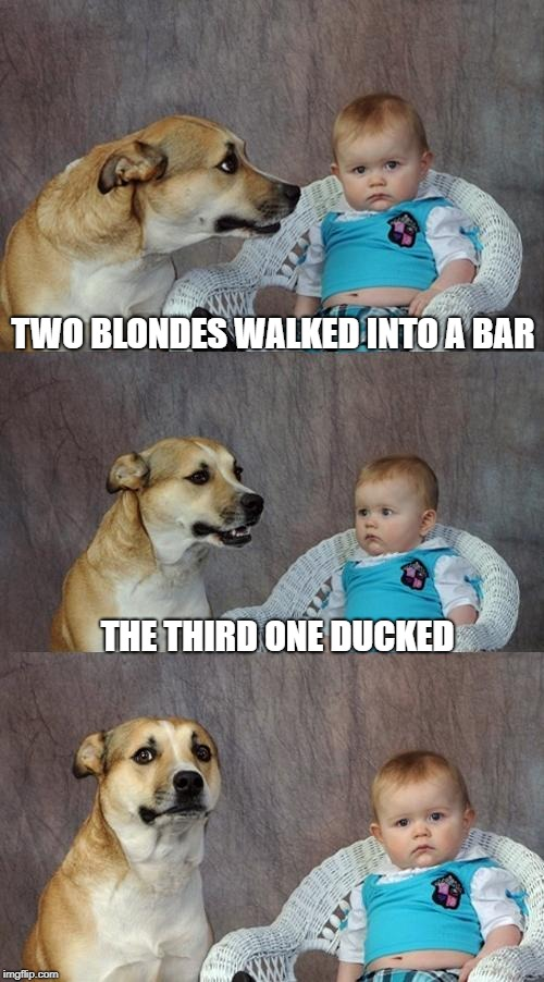 Blondes Have More Fun? | TWO BLONDES WALKED INTO A BAR THE THIRD ONE DUCKED | image tagged in memes,dad joke dog | made w/ Imgflip meme maker