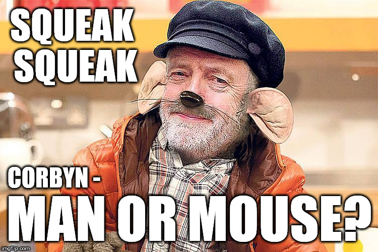 Corbyn - Man or Mouse? | SQUEAK SQUEAK MAN OR MOUSE? CORBYN - | image tagged in corbyn rat,party of hate,corbyn eww,corbyn mouse,communism socialism,momentum | made w/ Imgflip meme maker