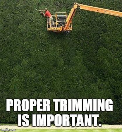 trimming the bushes | PROPER TRIMMING IS IMPORTANT. | image tagged in trimming the bushes | made w/ Imgflip meme maker