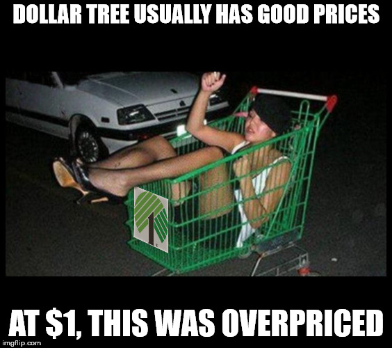 I knew they had a wide selection but... | DOLLAR TREE USUALLY HAS GOOD PRICES AT $1, THIS WAS OVERPRICED | image tagged in dollar store,overpriced | made w/ Imgflip meme maker