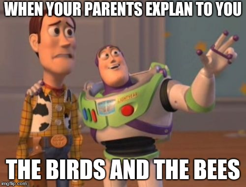 X, X Everywhere Meme | WHEN YOUR PARENTS EXPLAN TO YOU THE BIRDS AND THE BEES | image tagged in memes,x,x everywhere,x x everywhere | made w/ Imgflip meme maker
