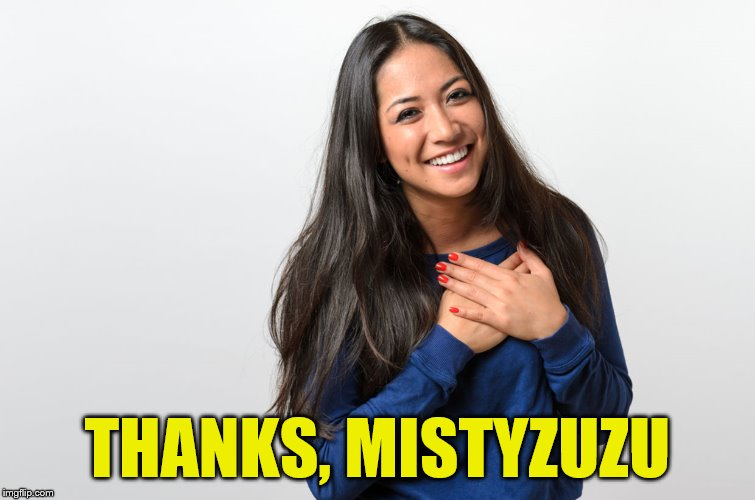 THANKS, MISTYZUZU | made w/ Imgflip meme maker