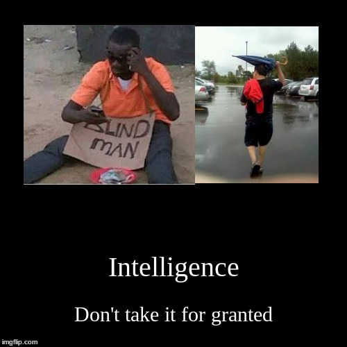 please, don't be like these people | Intelligence | Don't take it for granted | image tagged in funny,demotivationals | made w/ Imgflip demotivational maker