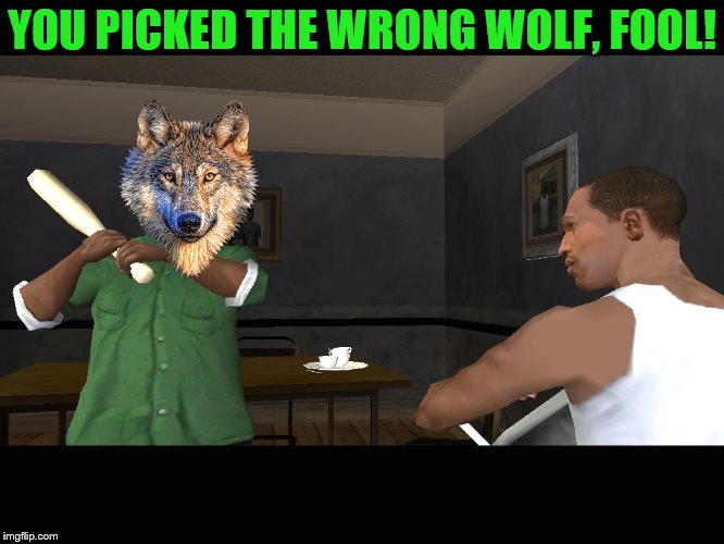 YOU PICKED THE WRONG WOLF, FOOL! | made w/ Imgflip meme maker