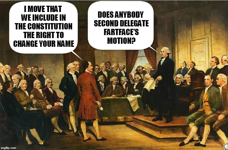 More Debate at the Constitutional Convention | I MOVE THAT WE INCLUDE IN THE CONSTITUTION THE RIGHT TO CHANGE YOUR NAME DOES ANYBODY SECOND DELEGATE FARTFACE'S MOTION? | image tagged in memes,constitutional convention,george washington,washington | made w/ Imgflip meme maker