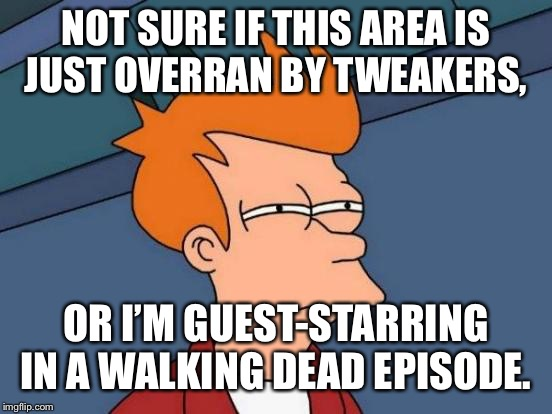 Futurama Fry Meme | NOT SURE IF THIS AREA IS JUST OVERRAN BY TWEAKERS, OR I'M GUEST-STARRING IN A WALKING DEAD EPISODE. | image tagged in memes,futurama fry | made w/ Imgflip meme maker