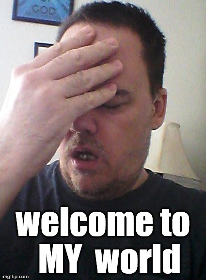 face palm | welcome to  MY  world | image tagged in face palm | made w/ Imgflip meme maker