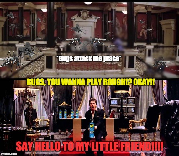 When bugs attack your house... | BUGS, YOU WANNA PLAY ROUGH!? OKAY!! SAY HELLO TO MY LITTLE FRIEND!!!! *Bugs attack the place* | image tagged in mosquito,say hello to my little friend,scarface,bugs,memes,funny | made w/ Imgflip meme maker