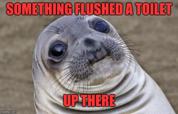 Awkward Moment Sealion Meme | SOMETHING FLUSHED A TOILET UP THERE | image tagged in memes,awkward moment sealion | made w/ Imgflip meme maker