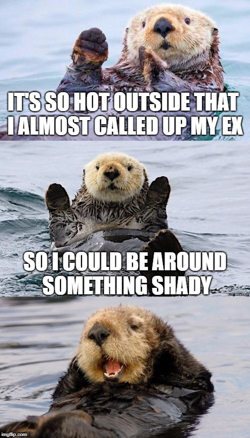 Bad pun otter | IT'S SO HOT OUTSIDE THAT I ALMOST CALLED UP MY EX SO I COULD BE AROUND SOMETHING SHADY | image tagged in bad pun otter | made w/ Imgflip meme maker