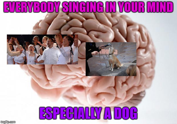 Scumbag Brain | EVERYBODY SINGING IN YOUR MIND ESPECIALLY A DOG | image tagged in scumbag brain,dogs,earworms,brain | made w/ Imgflip meme maker