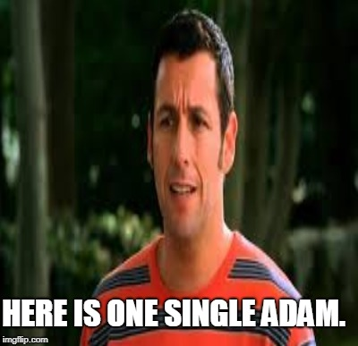 HERE IS ONE SINGLE ADAM. | made w/ Imgflip meme maker