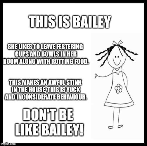 Be Like Bill Meme | THIS IS BAILEY SHE LIKES TO LEAVE FESTERING CUPS AND BOWLS IN HER ROOM ALONG WITH ROTTING FOOD. THIS MAKES AN AWFUL STINK IN THE HOUSE, THIS | image tagged in memes,be like bill | made w/ Imgflip meme maker