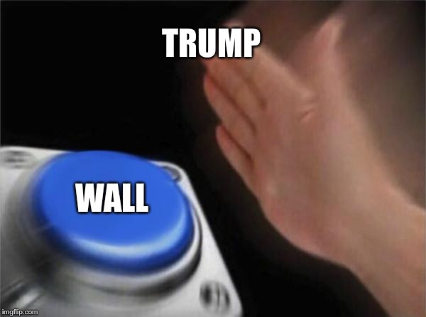 Blank Nut Button Meme | TRUMP WALL | image tagged in memes,blank nut button | made w/ Imgflip meme maker