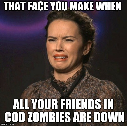That Face You Make | THAT FACE YOU MAKE WHEN ALL YOUR FRIENDS IN COD ZOMBIES ARE DOWN | image tagged in that face you make | made w/ Imgflip meme maker