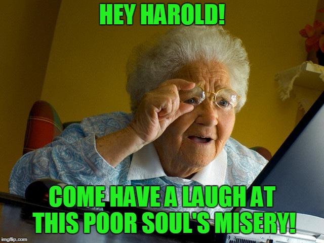 Grandma Finds The Internet Meme | HEY HAROLD! COME HAVE A LAUGH AT THIS POOR SOUL'S MISERY! | image tagged in memes,grandma finds the internet | made w/ Imgflip meme maker