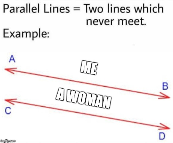Because women never look beyond the acne. | ME A WOMAN | image tagged in parallel lines | made w/ Imgflip meme maker