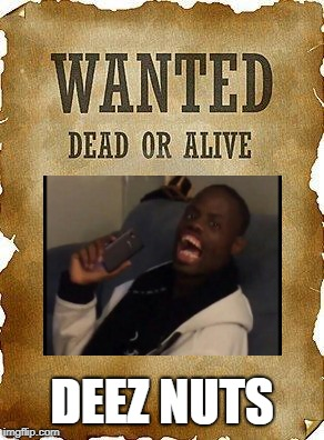 wanted dead or alive | DEEZ NUTS | image tagged in wanted dead or alive | made w/ Imgflip meme maker