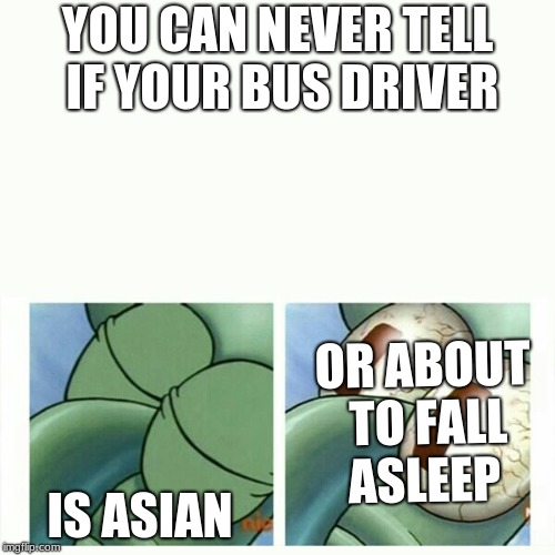 Squidward sleep | YOU CAN NEVER TELL IF YOUR BUS DRIVER IS ASIAN OR ABOUT TO FALL ASLEEP | image tagged in squidward sleep | made w/ Imgflip meme maker
