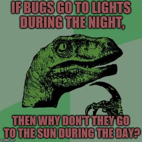 Philosoraptor Meme | IF BUGS GO TO LIGHTS DURING THE NIGHT, THEN WHY DON'T THEY GO TO THE SUN DURING THE DAY? | image tagged in memes,philosoraptor | made w/ Imgflip meme maker