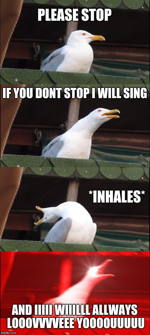Inhaling Seagull Meme | PLEASE STOP IF YOU DONT STOP I WILL SING *INHALES* AND IIIII WIIILLL ALLWAYS LOOOVVVVEEE YOOOOUUUUU | image tagged in memes,inhaling seagull | made w/ Imgflip meme maker
