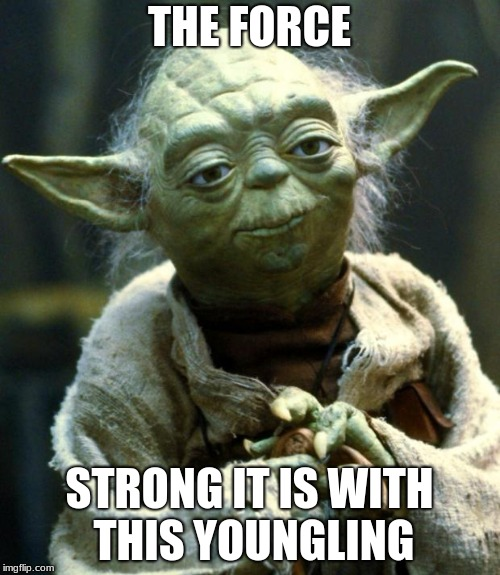 Star Wars Yoda Meme | THE FORCE STRONG IT IS WITH THIS YOUNGLING | image tagged in memes,star wars yoda | made w/ Imgflip meme maker