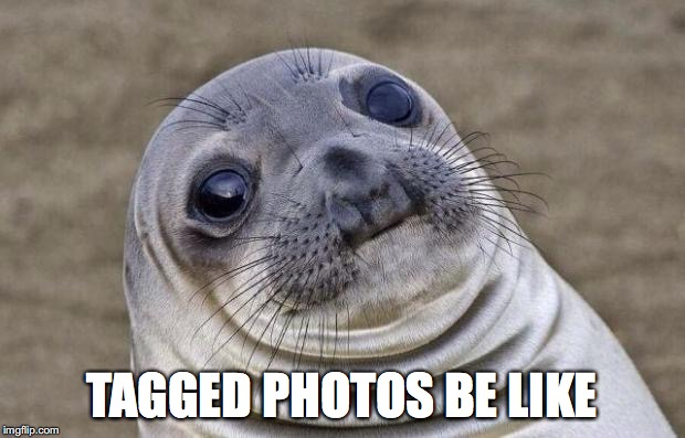 Awkward Moment Sealion Meme | TAGGED PHOTOS BE LIKE | image tagged in memes,awkward moment sealion | made w/ Imgflip meme maker