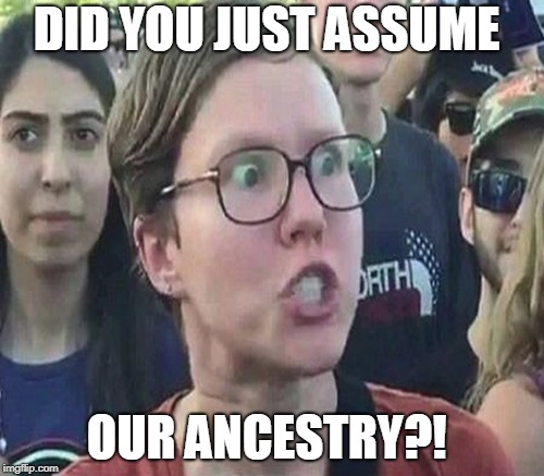 DID YOU JUST ASSUME OUR ANCESTRY?! | made w/ Imgflip meme maker