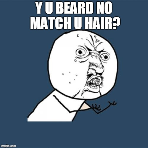 Y U No Meme | Y U BEARD NO MATCH U HAIR? | image tagged in memes,y u no | made w/ Imgflip meme maker