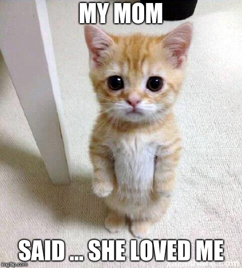 Cute Cat Meme | MY MOM SAID ... SHE LOVED ME | image tagged in memes,cute cat | made w/ Imgflip meme maker