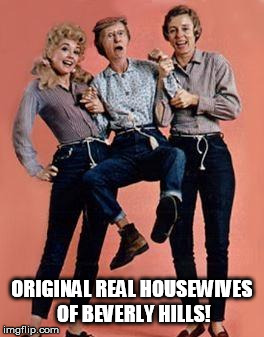 ORIGINAL REAL HOUSEWIVES OF BEVERLY HILLS! | image tagged in real housewives beverly hillbillies | made w/ Imgflip meme maker