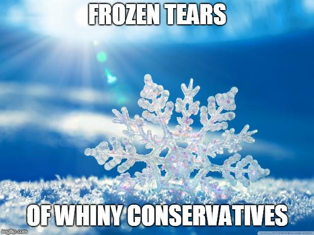 FROZEN TEARS OF WHINY CONSERVATIVES | made w/ Imgflip meme maker