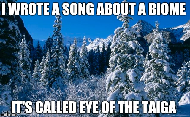 Eye of the Taiga | I WROTE A SONG ABOUT A BIOME IT'S CALLED EYE OF THE TAIGA | image tagged in puns,punny | made w/ Imgflip meme maker